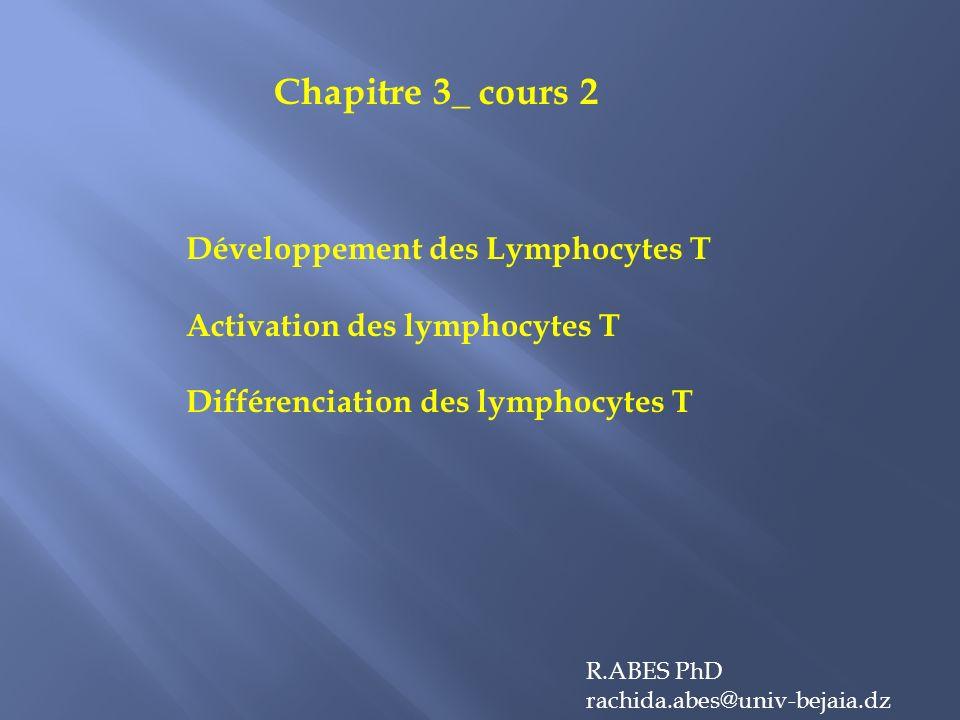 Chapitre 3_ cours 2 Développement des Lymphocytes T