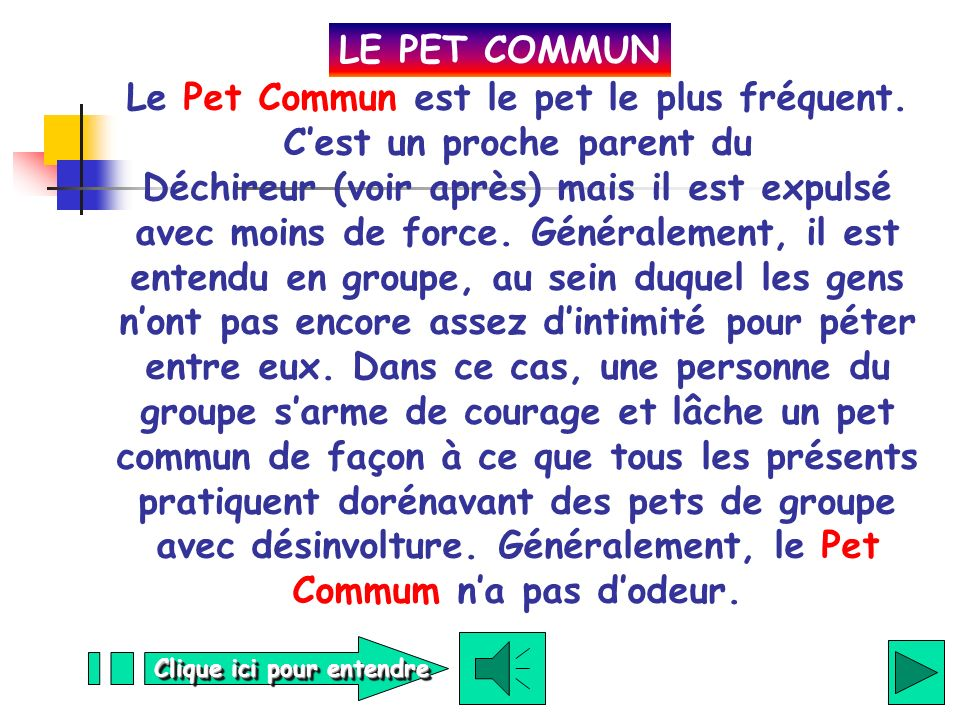 LE PET COMMUN