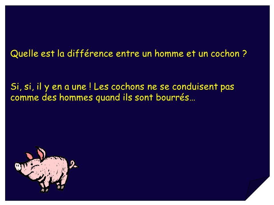 Quelle est la différence entre un homme et un cochon