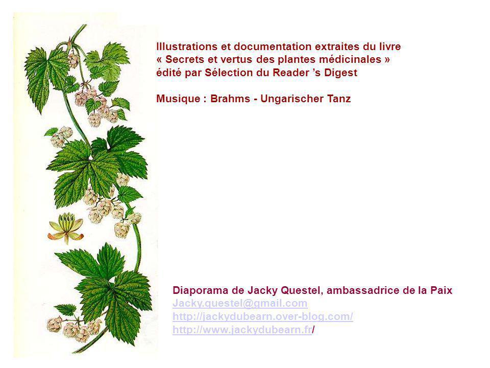 Illustrations et documentation extraites du livre
