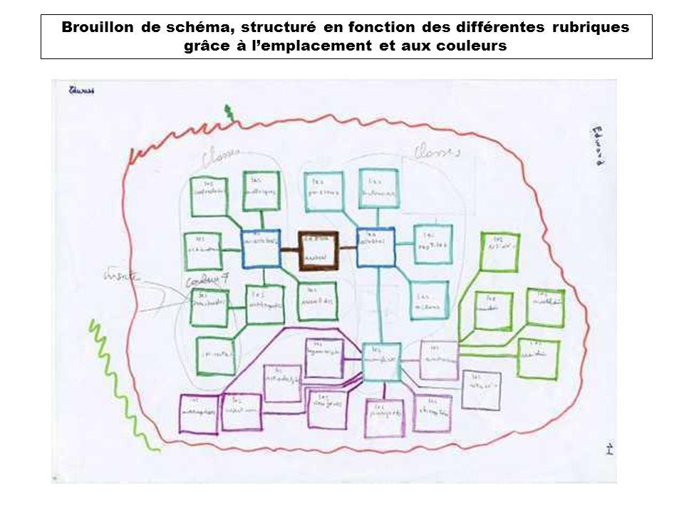 Brouillon de schéma, structuré en fonction des différentes rubriques grâce à l'emplacement et aux couleurs