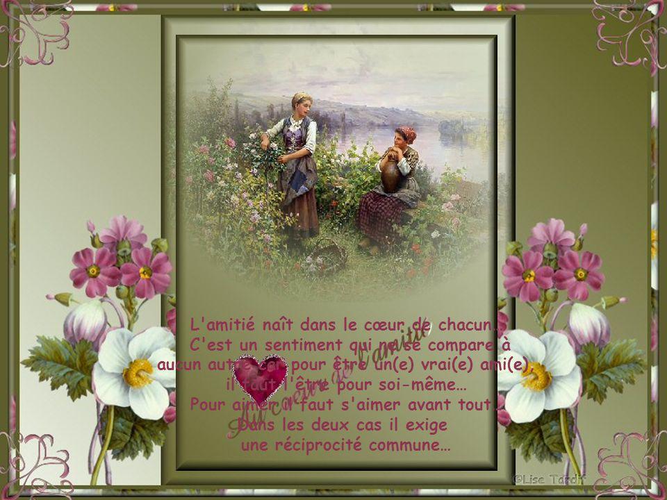 L amitié naît dans le cœur de chacun…
