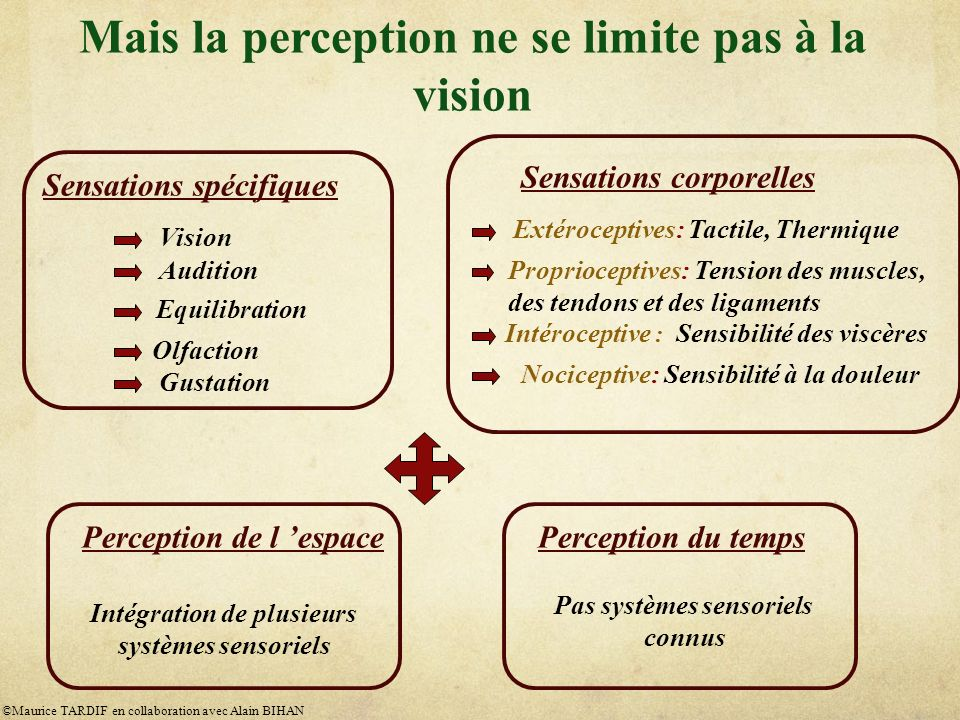 Mais la perception ne se limite pas à la vision