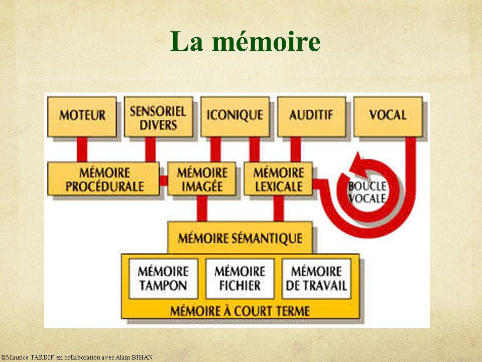 La mémoire ©Maurice TARDIF en collaboration avec Alain BIHAN