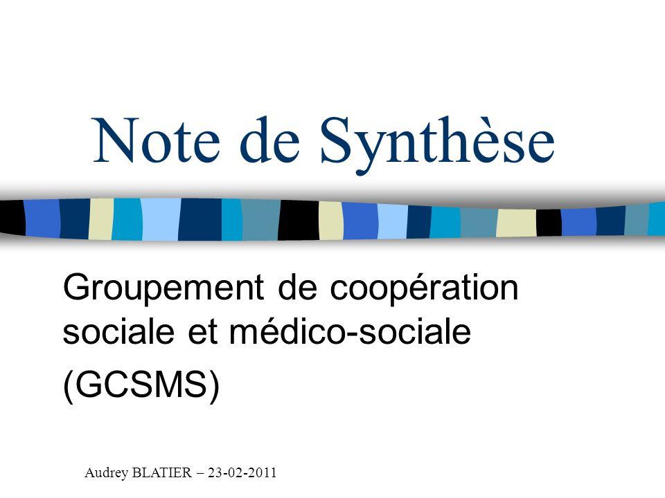 Groupement de coopération sociale et médico-sociale (GCSMS)