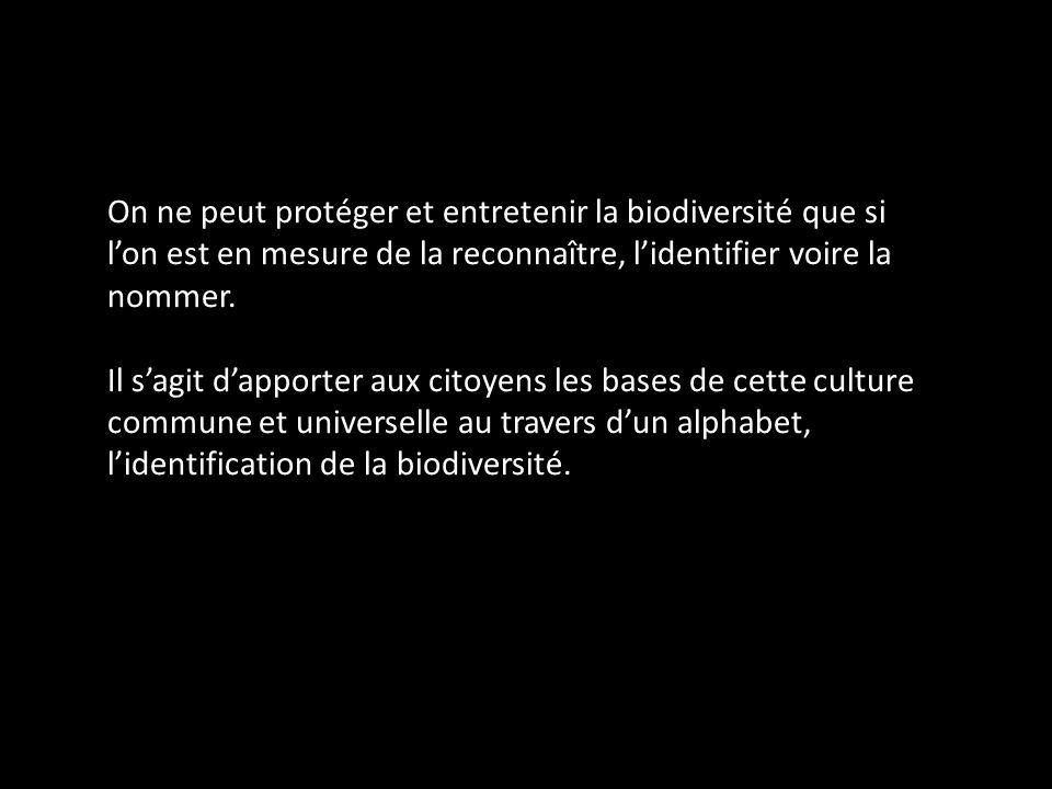 On ne peut protéger et entretenir la biodiversité que si l'on est en mesure de la reconnaître, l'identifier voire la nommer.