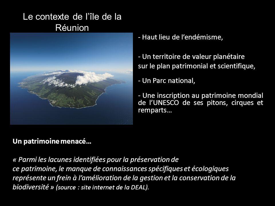 Le contexte de l'île de la Réunion