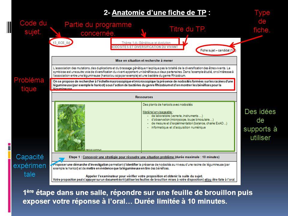 2- Anatomie d'une fiche de TP : Type de fiche. Code du sujet.