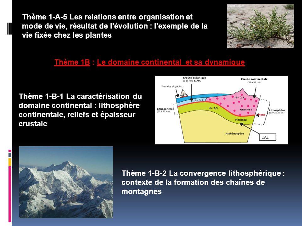 Thème 1-A-5 Les relations entre organisation et mode de vie, résultat de l évolution : l exemple de la vie fixée chez les plantes