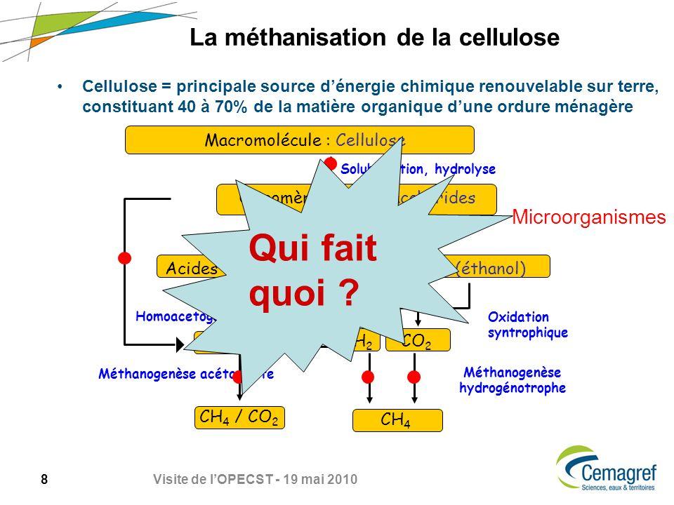 La méthanisation de la cellulose