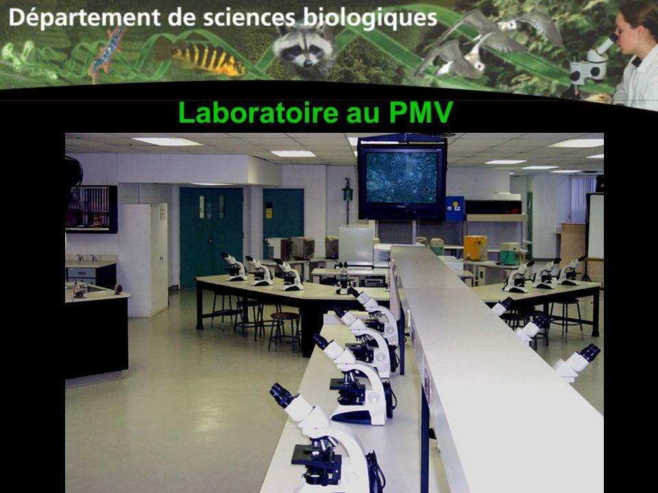 Laboratoire au PMV