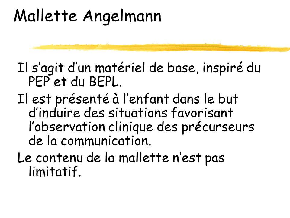 Mallette Angelmann Il s'agit d'un matériel de base, inspiré du PEP et du BEPL.