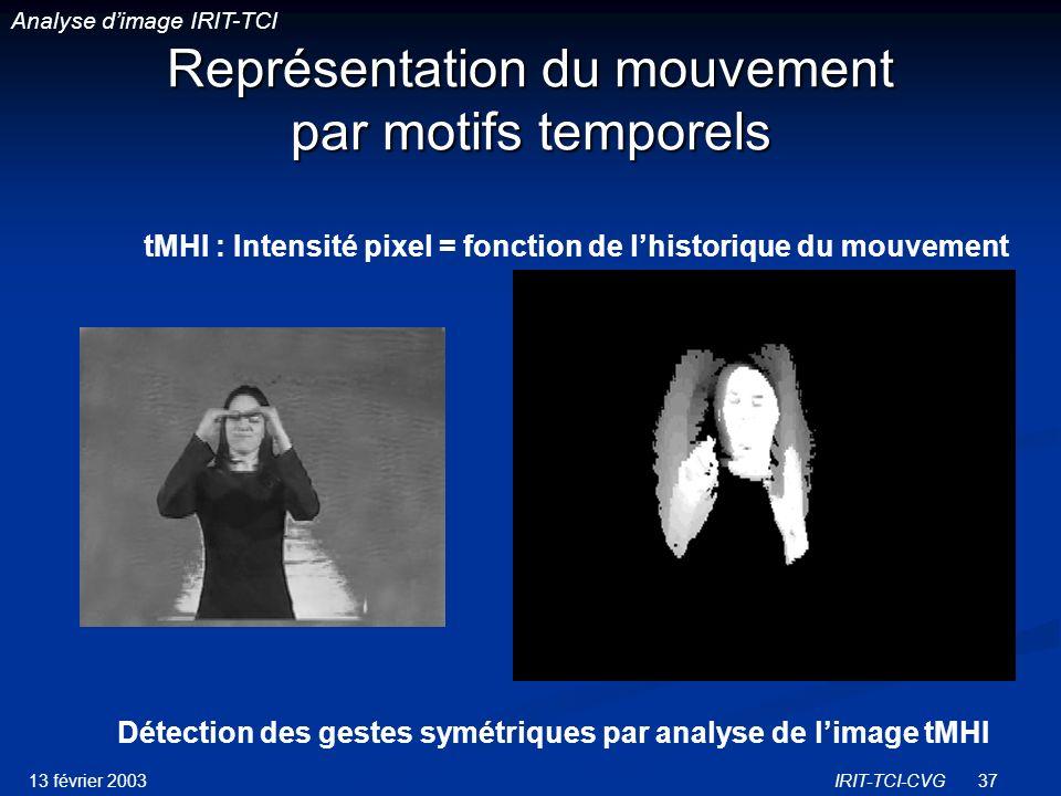 Représentation du mouvement par motifs temporels