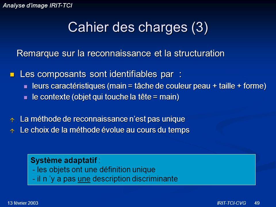 Analyse d'image IRIT-TCI