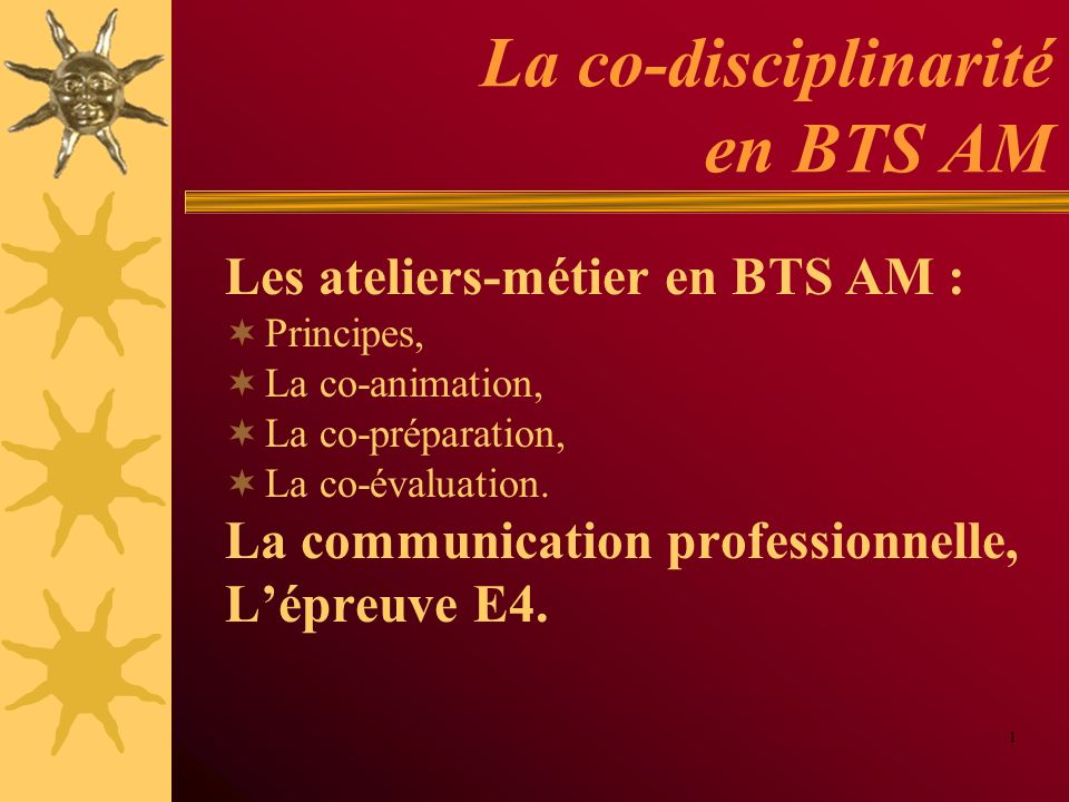 La co-disciplinarité en BTS AM