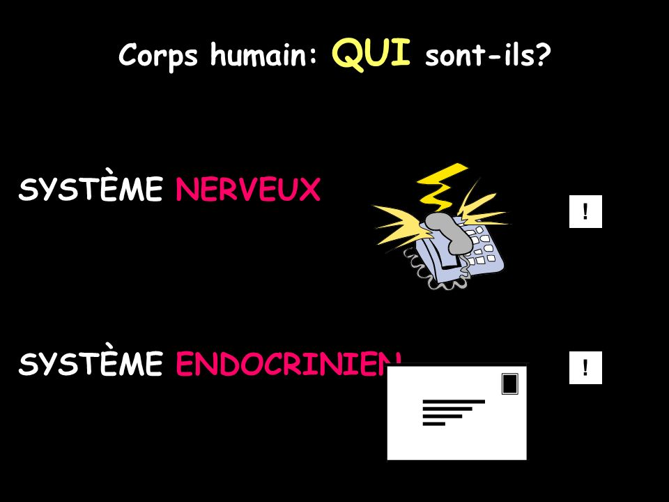 Corps humain: QUI sont-ils