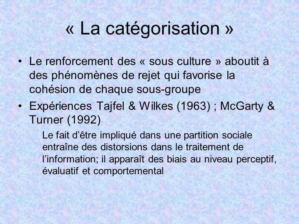 « La catégorisation » Le renforcement des « sous culture » aboutit à des phénomènes de rejet qui favorise la cohésion de chaque sous-groupe.