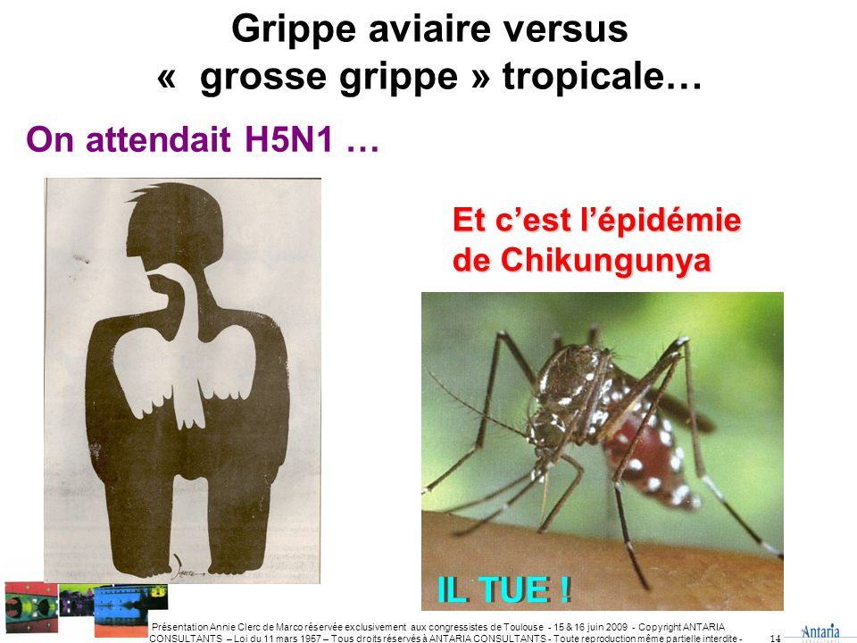 « grosse grippe » tropicale…