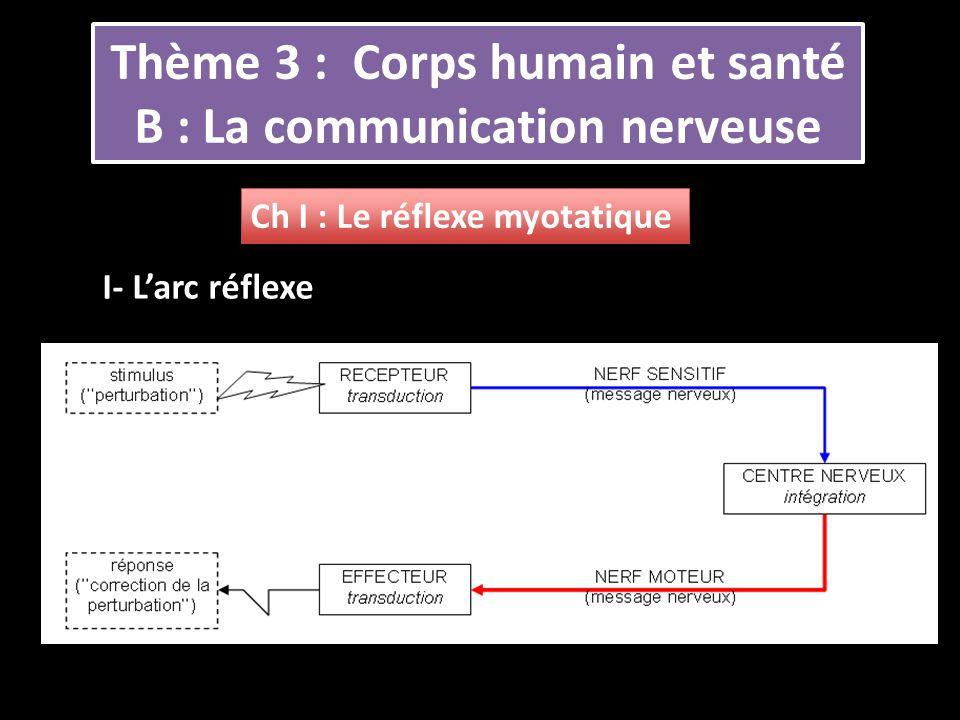 Thème 3 : Corps humain et santé B : La communication nerveuse