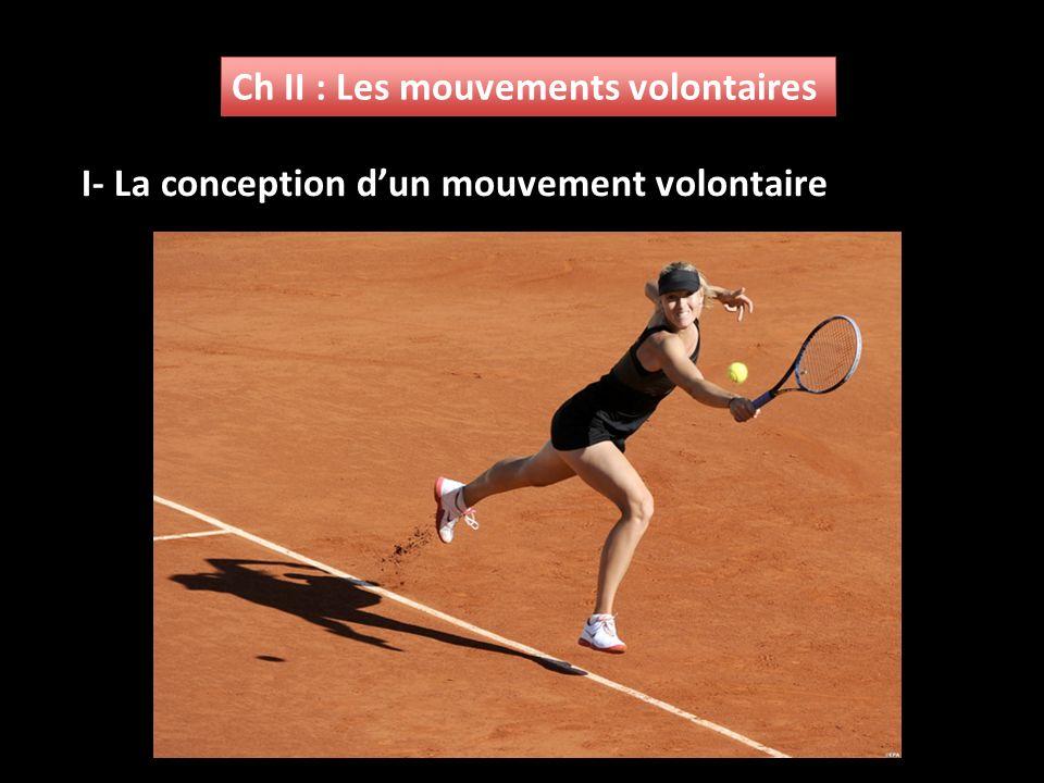 Ch II : Les mouvements volontaires
