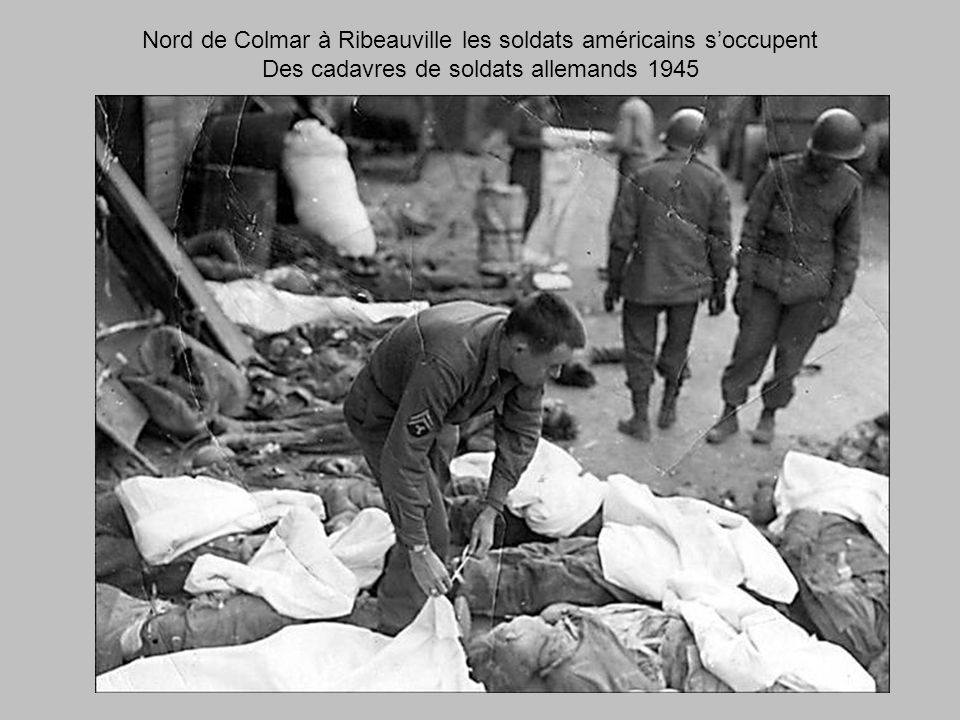 Nord de Colmar à Ribeauville les soldats américains s'occupent