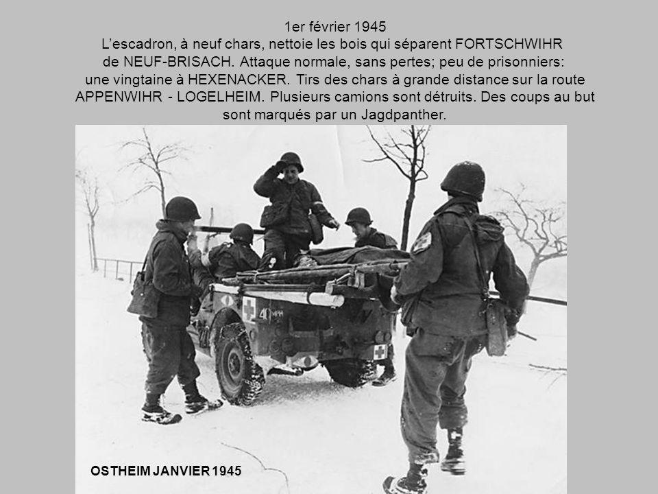 L'escadron, à neuf chars, nettoie les bois qui séparent FORTSCHWIHR