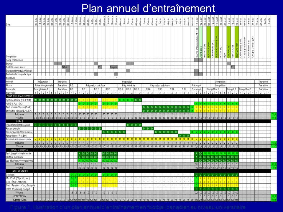 Plan annuel d'entraînement