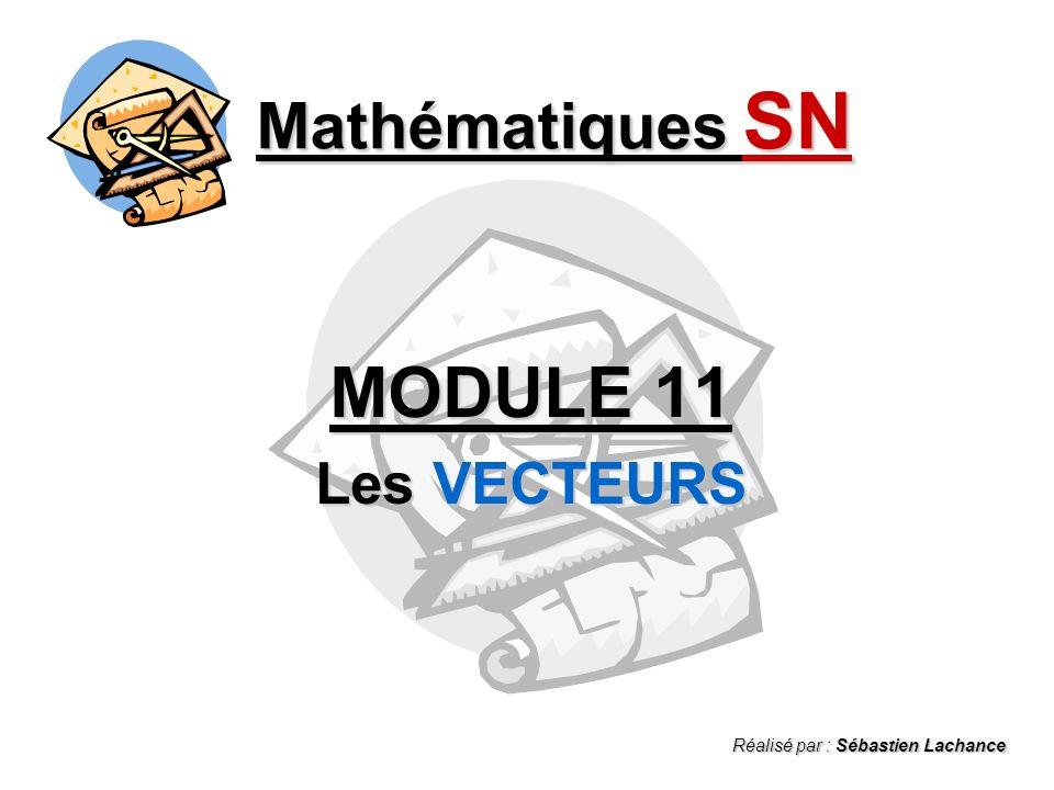 MODULE 11 Mathématiques SN Les VECTEURS