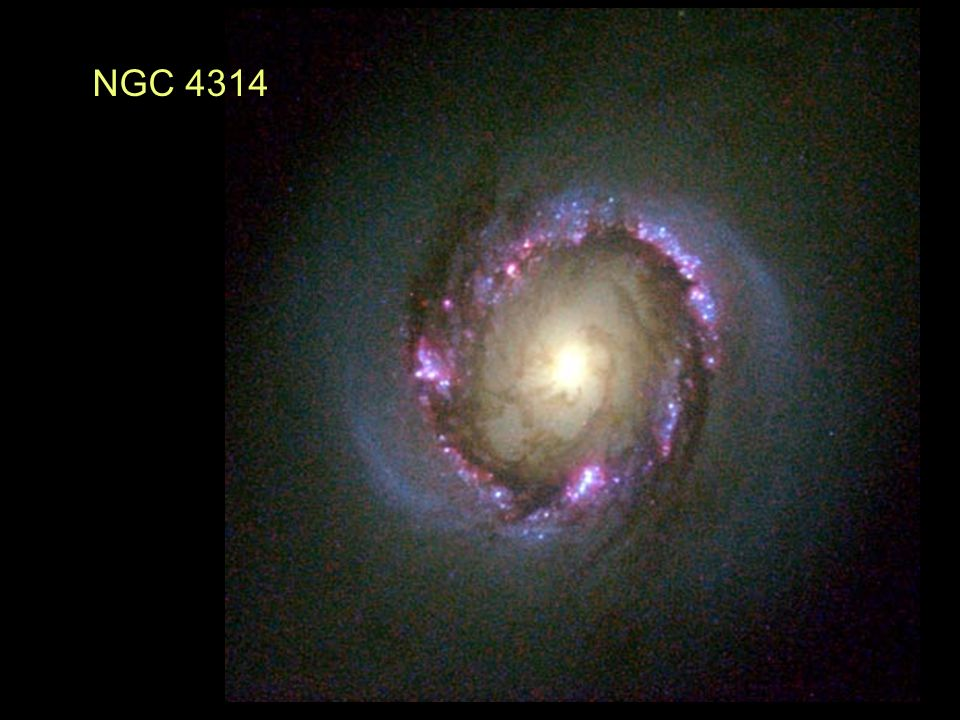 NGC 4314 This set of three images compares infrared with visual wavelength in their power to penetrate dust.