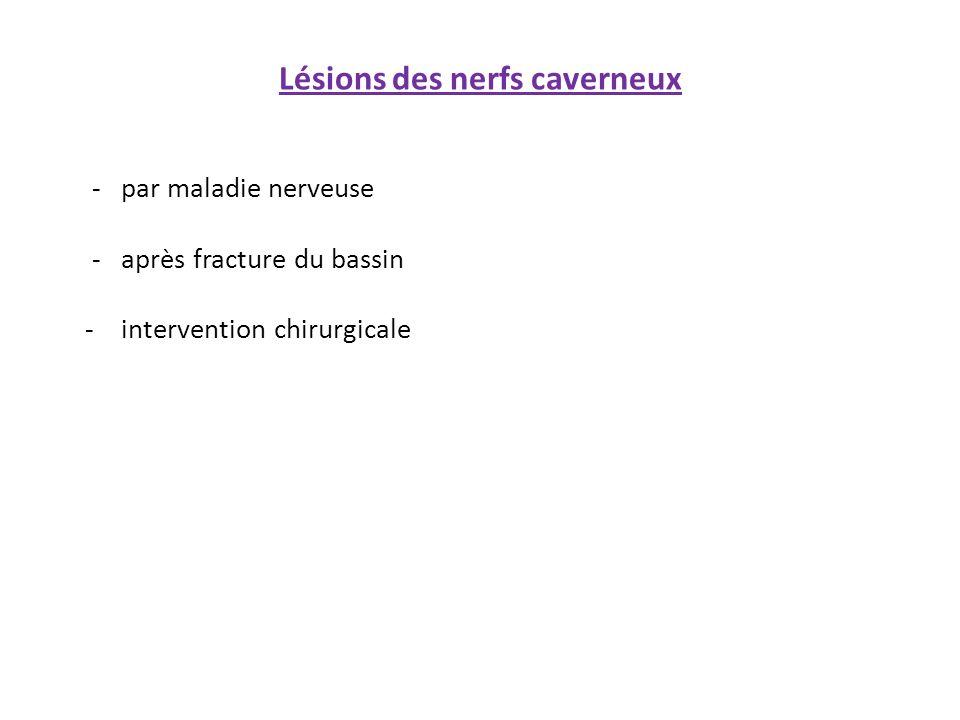 Lésions des nerfs caverneux