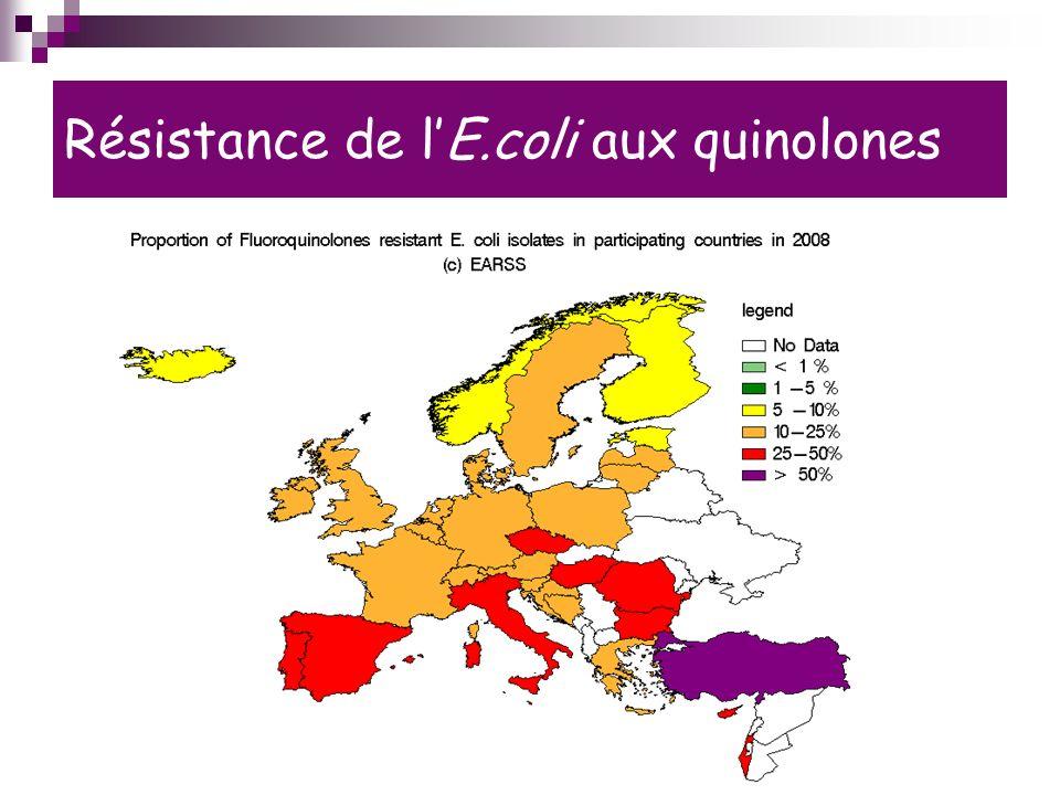 Résistance de l'E.coli aux quinolones