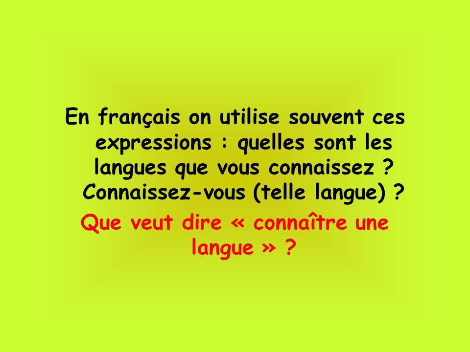 Que veut dire « connaître une langue »