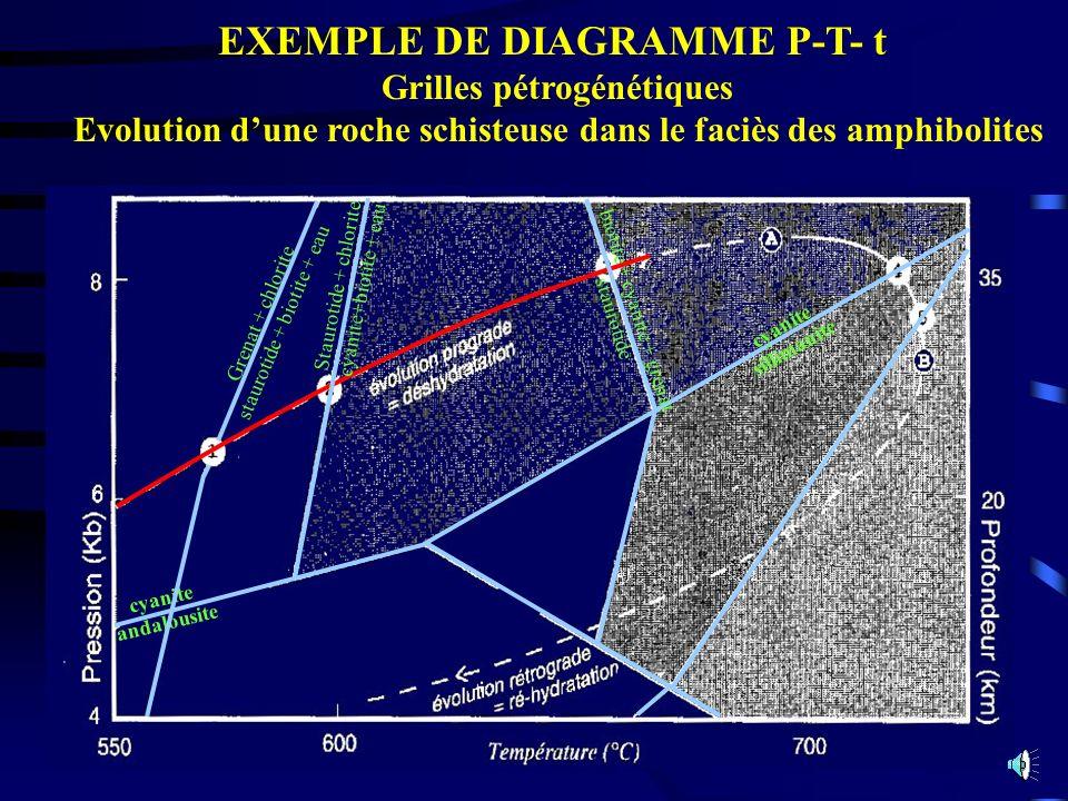 EXEMPLE DE DIAGRAMME P-T- t