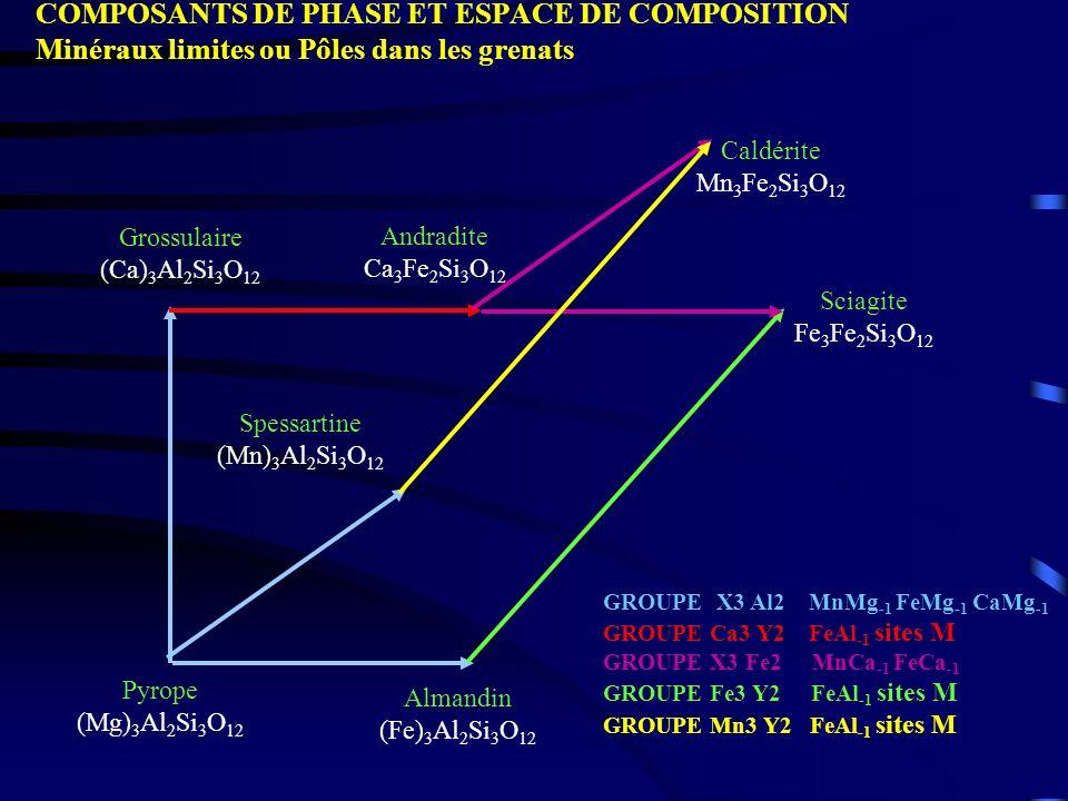 COMPOSANTS DE PHASE ET ESPACE DE COMPOSITION Minéraux limites ou Pôles dans les grenats