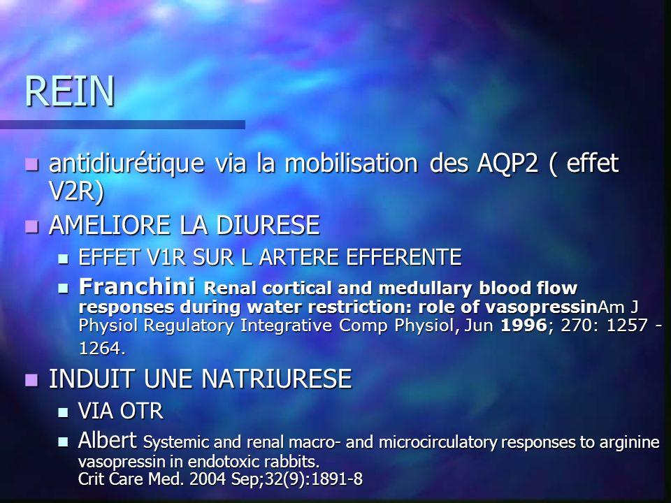 REIN antidiurétique via la mobilisation des AQP2 ( effet V2R)