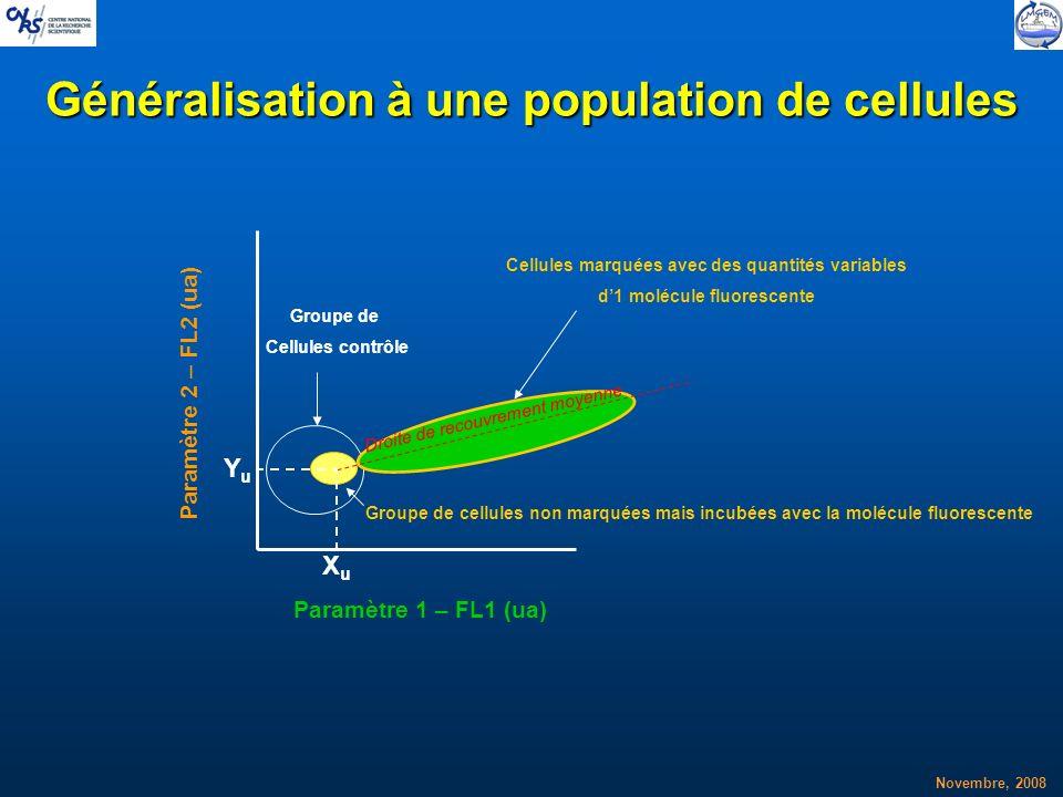 Généralisation à une population de cellules