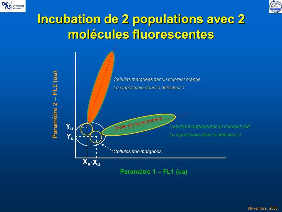 Incubation de 2 populations avec 2 molécules fluorescentes
