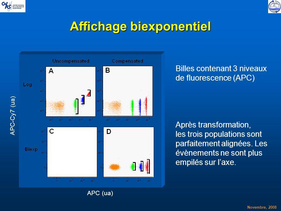 Affichage biexponentiel