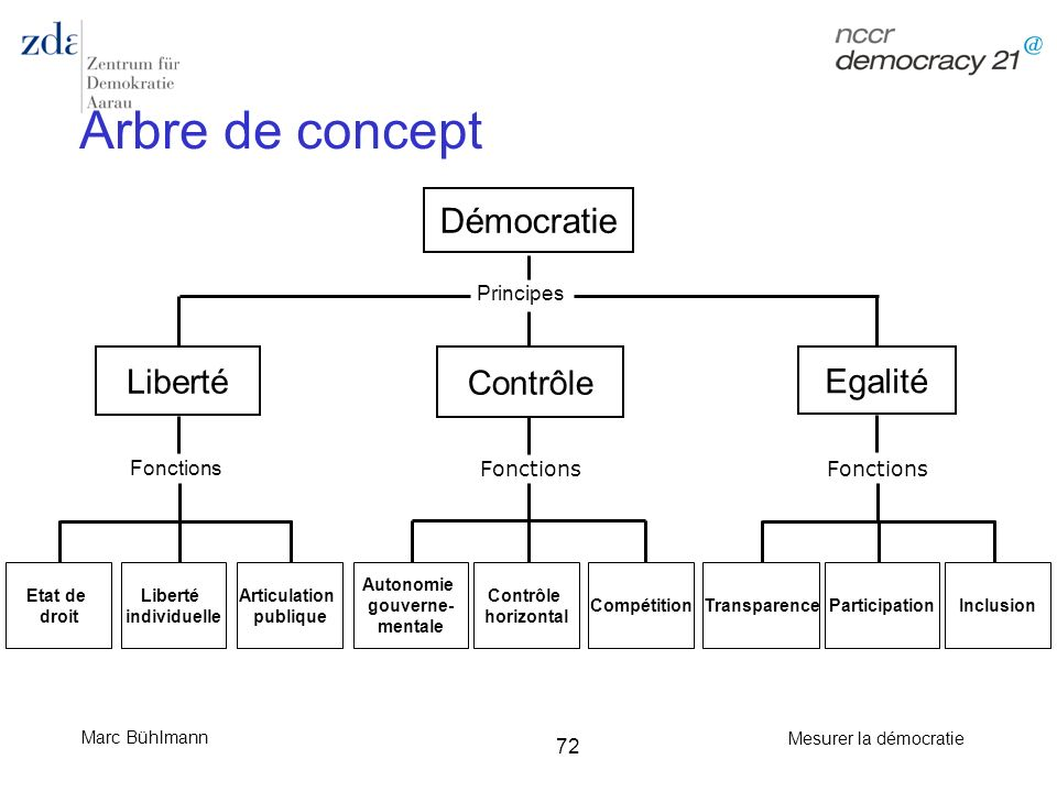 Arbre de concept Démocratie Liberté Contrôle Egalité Principes