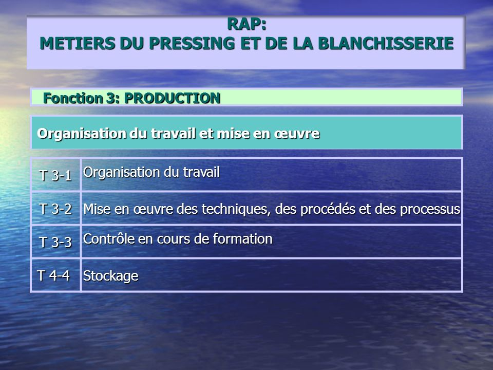 RAP: METIERS DU PRESSING ET DE LA BLANCHISSERIE