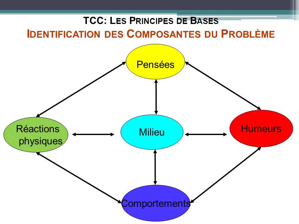 TCC: Les Principes de Bases Identification des Composantes du Problème
