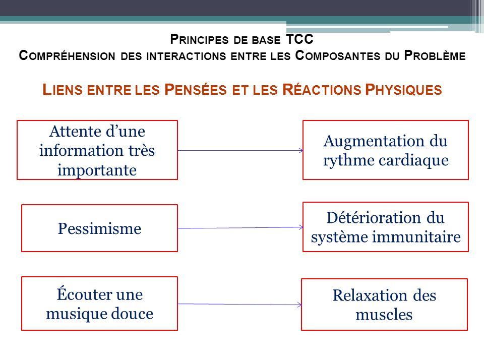 Principes de base TCC Compréhension des interactions entre les Composantes du Problème Liens entre les Pensées et les Réactions Physiques