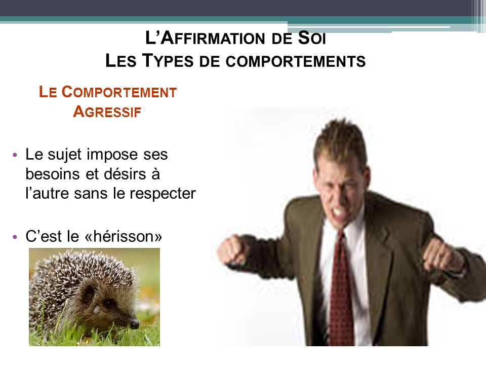 L'Affirmation de Soi Les Types de comportements