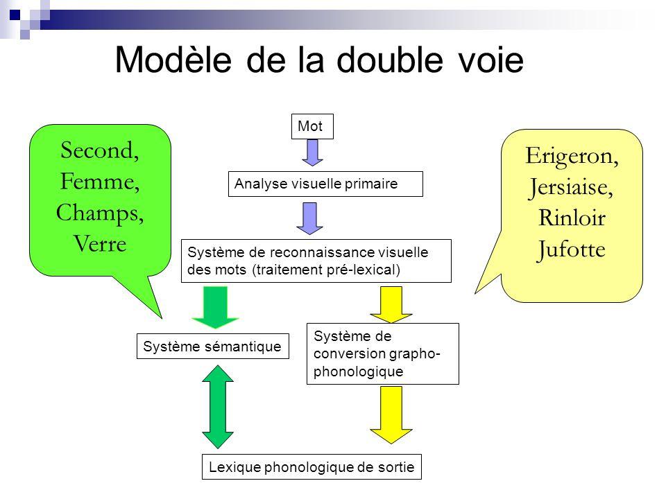 Modèle de la double voie