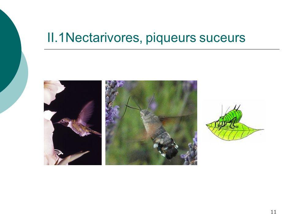 II.1Nectarivores, piqueurs suceurs