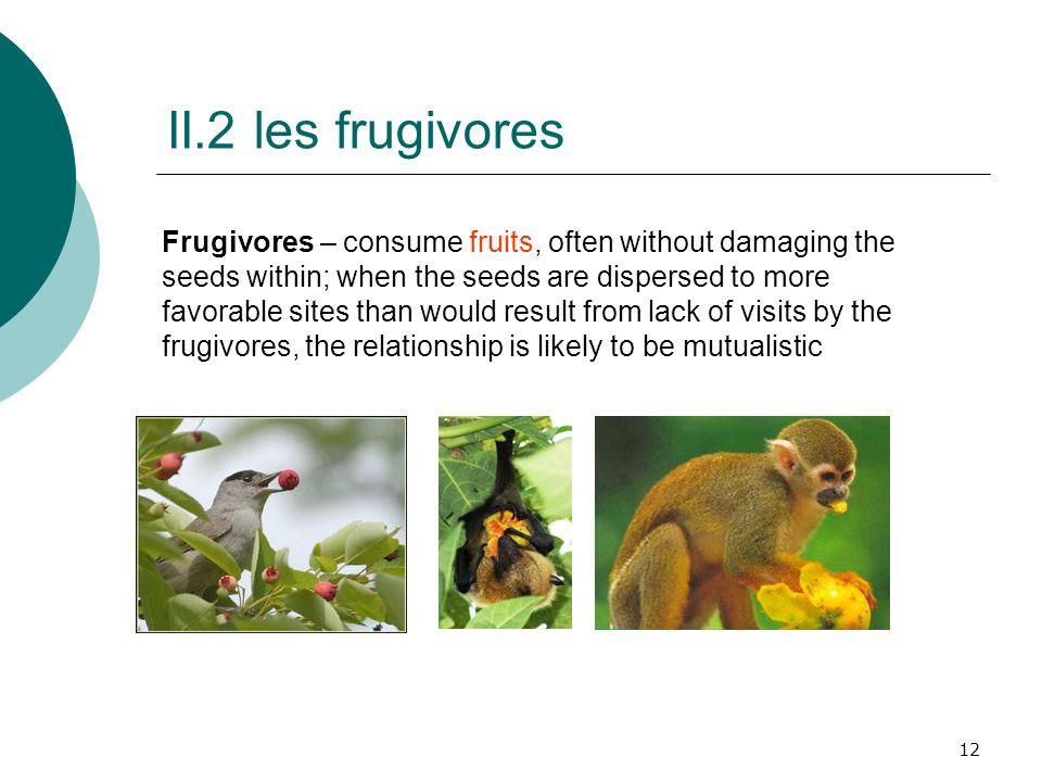 II.2 les frugivores
