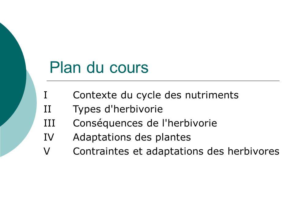 Plan du cours I Contexte du cycle des nutriments II Types d herbivorie