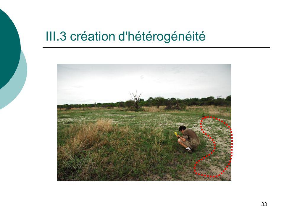 III.3 création d hétérogénéité
