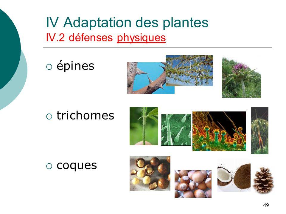 IV Adaptation des plantes IV.2 défenses physiques