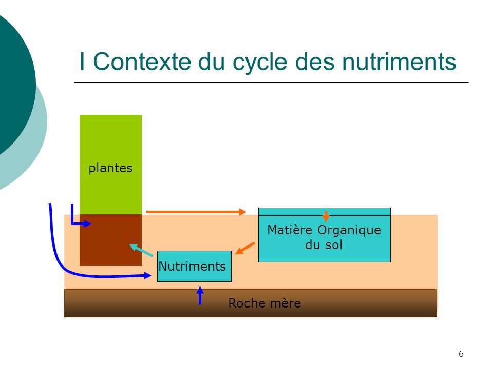 I Contexte du cycle des nutriments